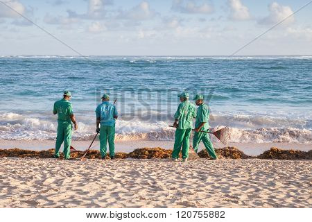 Hotel Workers Engaged In Cleaning The Beach