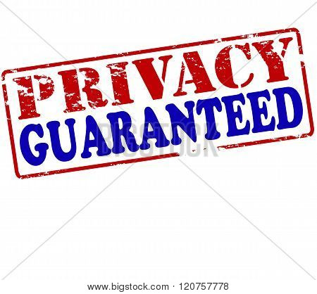 Rubber stamp with text privacy guaranteed inside vector illustration