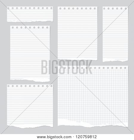 Pieces of torn white lined and squared notebook paper with sticky tape on gray background