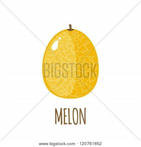 Melon icon in flat style on white background