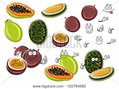 Papaya, maracuja and durian fruits