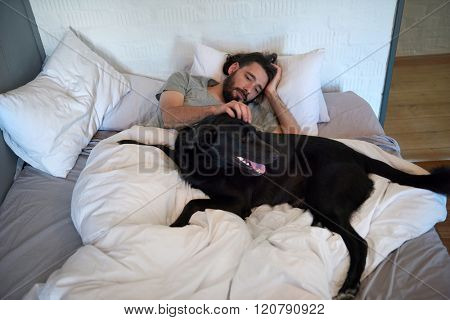 Dog lying in bed with owner, getting stroked and scratched, loving friendship companionship best friend