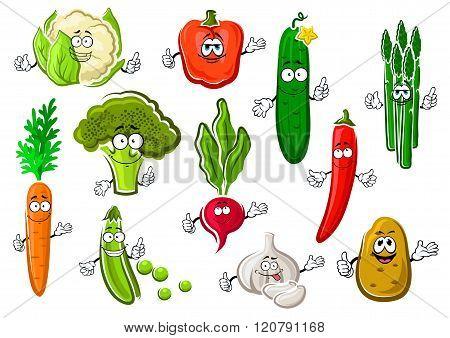 Healthful ripe farm vegetables set