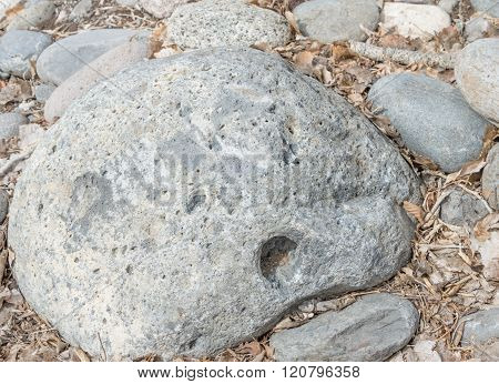 A rock with a face