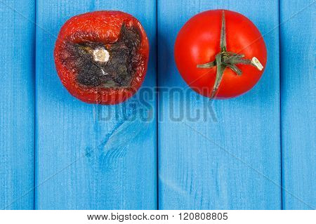 Old Wrinkled And Fresh Tomato On Blue Boards, Copy Space For Text