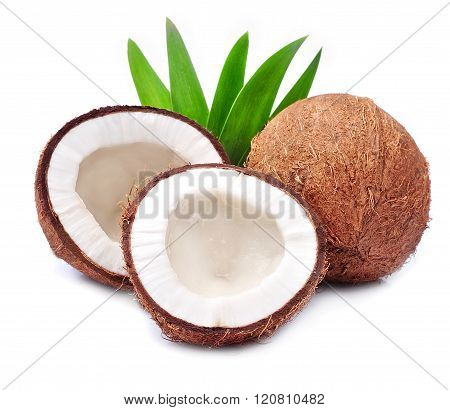 Coconuts With Leaves