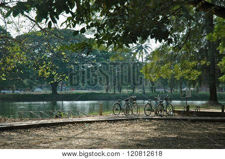 Bikes by a lake