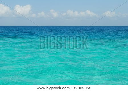 Clear sea of a coral reserve