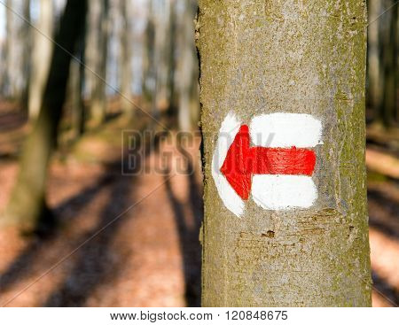 Red Tourist Or Hiking Trail Signs Symbols On Tree Tree