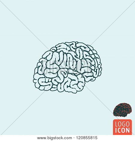 Brain Icon Isolated