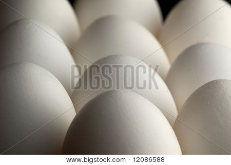 Image of eggs in low light condition