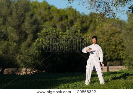 Man Practicing Tai-chi In The Park