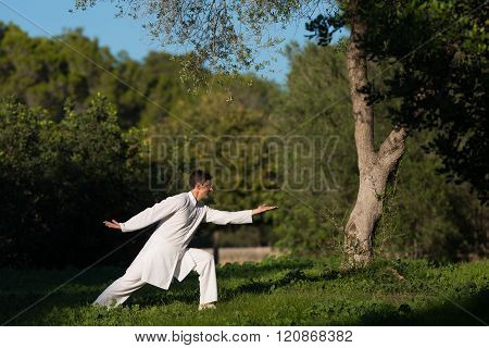 Young Caucasian Man Practicing Tai-chi Outdoors In The Park