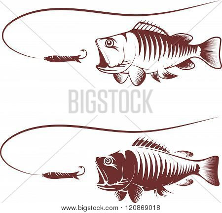 Sea Bass And Lure Template Vector Illustration