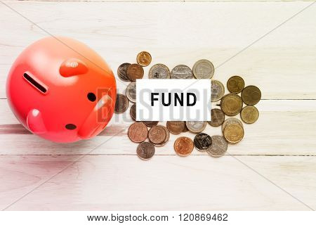 Piggy bank and coin money with fund text on white card background