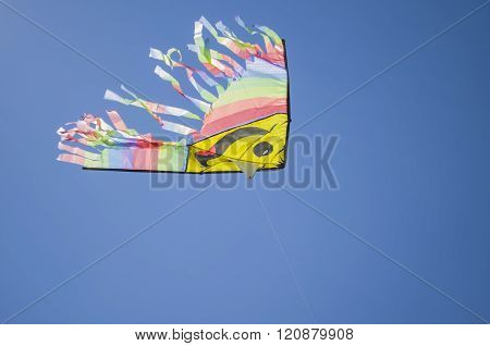 A kite flies in the sky