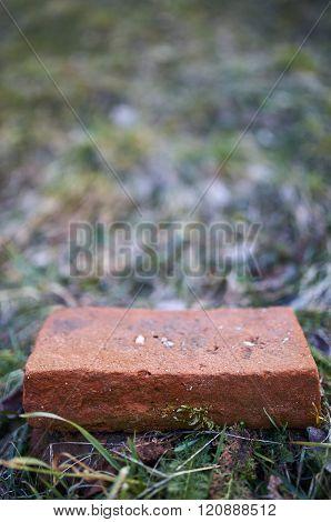 Brick On The Grass