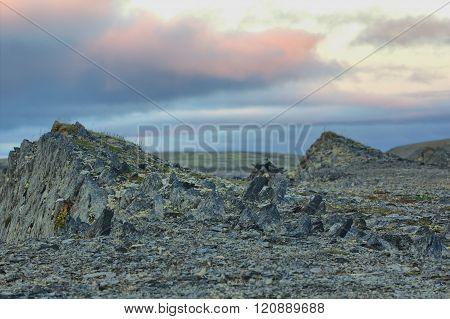 Christ Lived In Stone Polar Desert 40 Days. Arctic