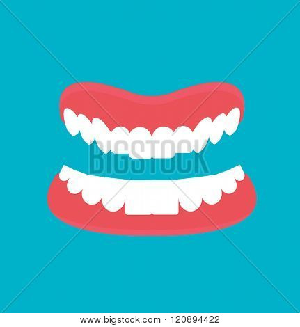 Vector cartoon false teeth. White false teeth. False teeth prosthetic isolated. Full denture with clipping path. Dental technology vector. False teeth vector.