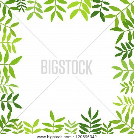 Branches with green leaves.Vector illustration.