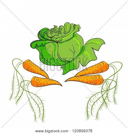 Vector Illustration Of Vegetables Cabbage, And Carrots