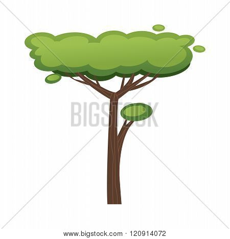 African tree vector illustration isolated on white background