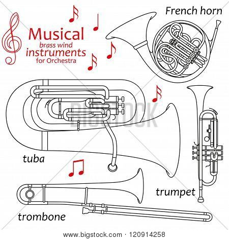 Set of line icons. Musical brass wind instruments for orchestra. Info graphic elements. Simple desig