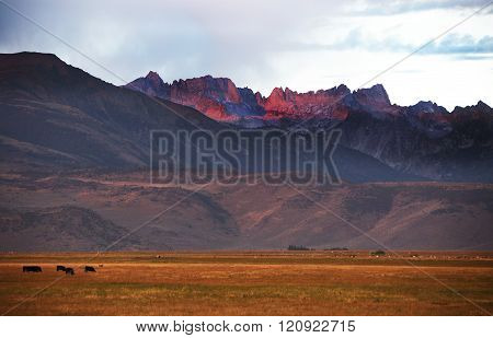 Rugged Purple Mountains Above Meadow Pasture