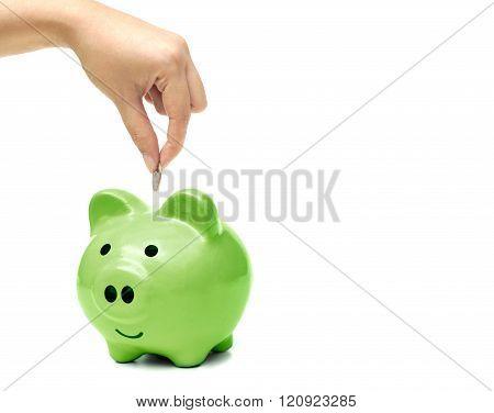 Female hand saving money in a green piggybank / Green saving concept