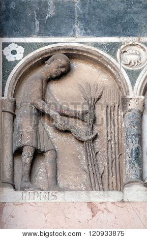 LUCCA, ITALY - JUNE 06, 2015: June, detail of the bas-relief representing the Labor of the months of the year, portal of the Cathedral of St Martin in Lucca, Italy, on June 06, 2015