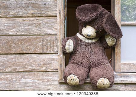 Old stuffed bear