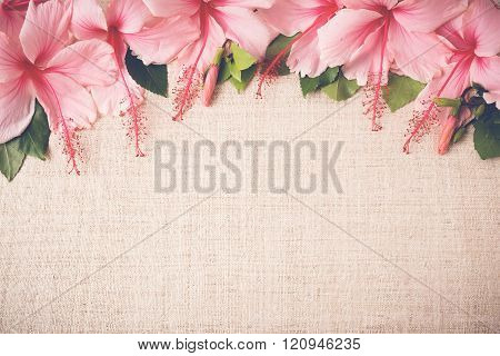 Pink Hibiscus flowers on linen, copy space background, selective focus, vintage tone