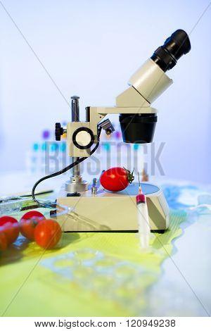 Food Testing In The Laboratory. Gmo Food