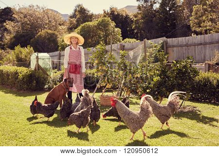 Senior woman farmer with her dog and chickens in backyard
