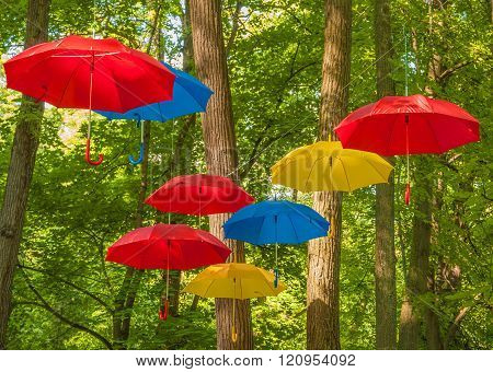 Multi-colored umbrellas