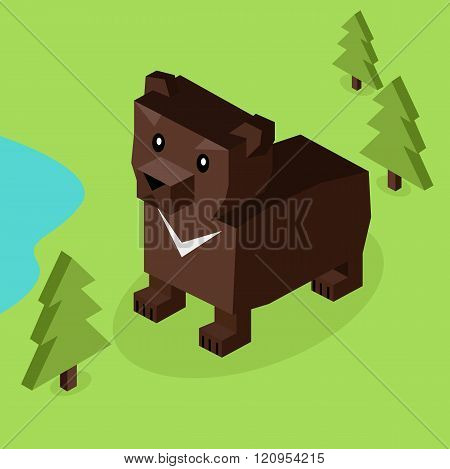 Wild Animal Bear Isometric 3d Design
