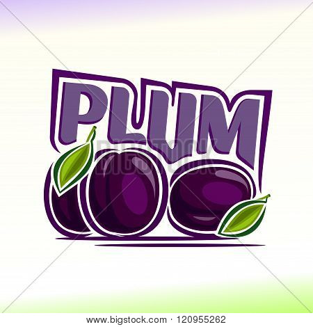 Vector illustration on the theme of plum