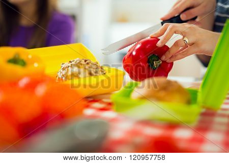 Mother preparing healthy and tasty lunch box for child at home