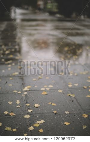 wet street ,selective focus on the nearest part, great DOF 1,2