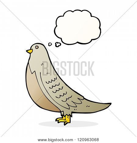 cartoon common bird with thought bubble