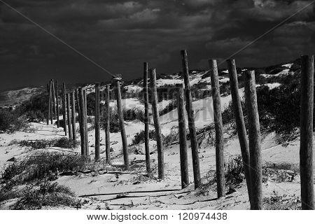 Overcast beach