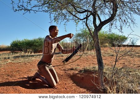 Hunter Bushman, Namibia