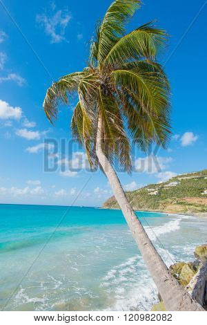 Beautiful St Martin Caribbean ocean vacation destination vertical scene