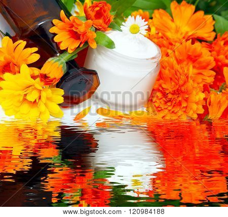 marigolds on water. marigold cream, marigold ointment in cream glass with brown bottle