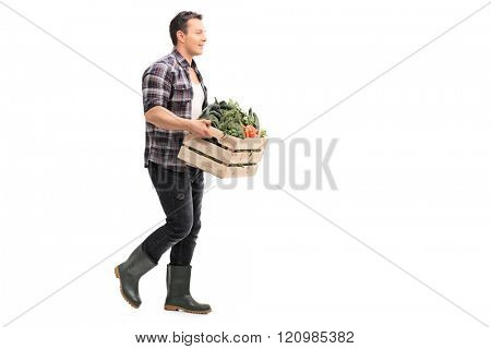 Profile shot of a young agricultural worker carrying a crate full of vegetables isolated on white background