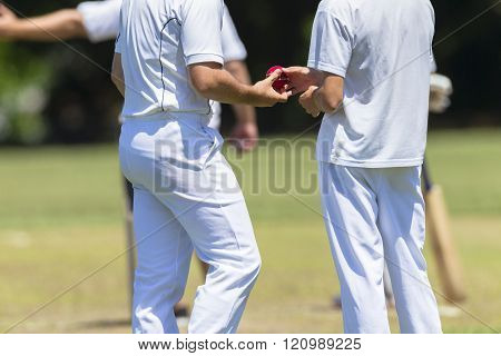 Cricket Ball Players