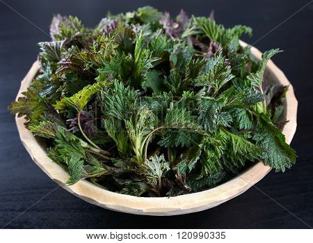 A Bowl With Stinging Nettles