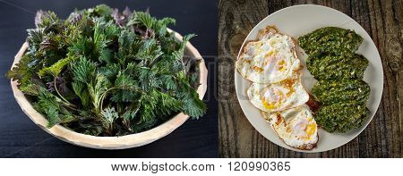 Before and after cooking nettles