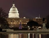 pic of capitol building  - this a picture of the us capitol with the national christmas tree in the front - JPG