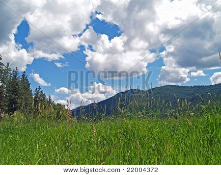 Grassy Field With Mountains And A Partly Cloudy Blue Sky In Background